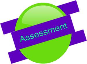 Self assessment test and essay